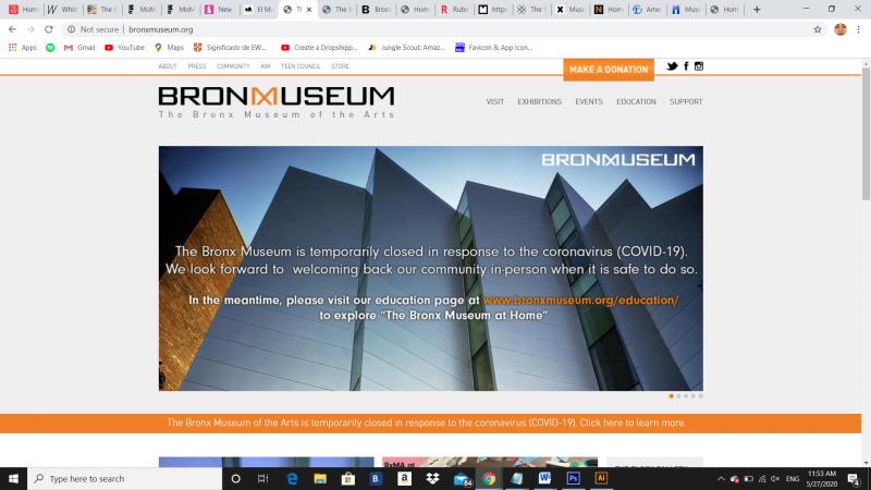 www.bronxmuseum.org, 2020 - Photography (Naivy Perez)