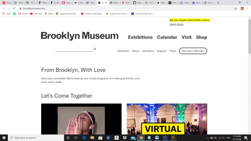 www.brooklynmuseum.org, 2020 - Photography (Naivy Perez)