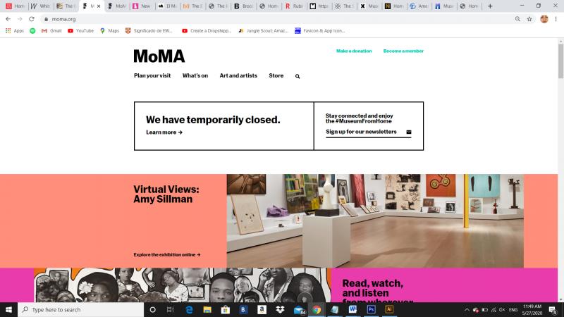 www.moma.org, 2020 - Photography (Naivy Perez)