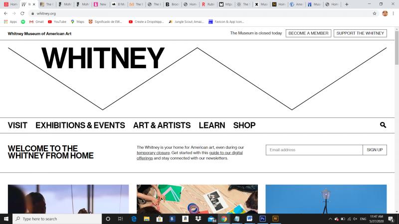 www.whitney.org, 2020 - Photography (Naivy Perez)